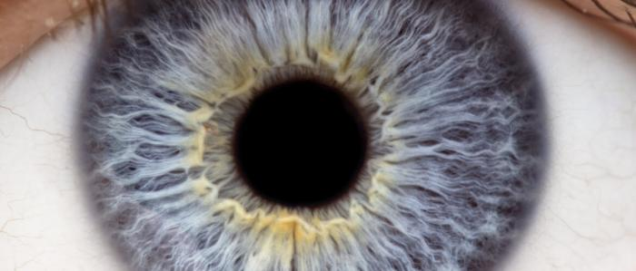 Retinopatica diabetica: l'imaging nella diagnosi e nel follow-up